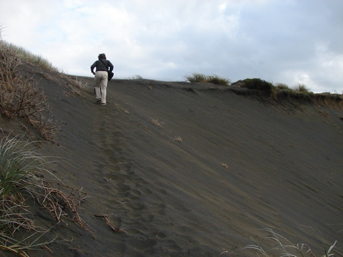 diagonally up the dune